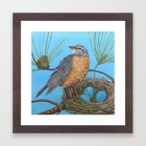 robin-with-nest-in-georgia-pine-tree-framed-prints