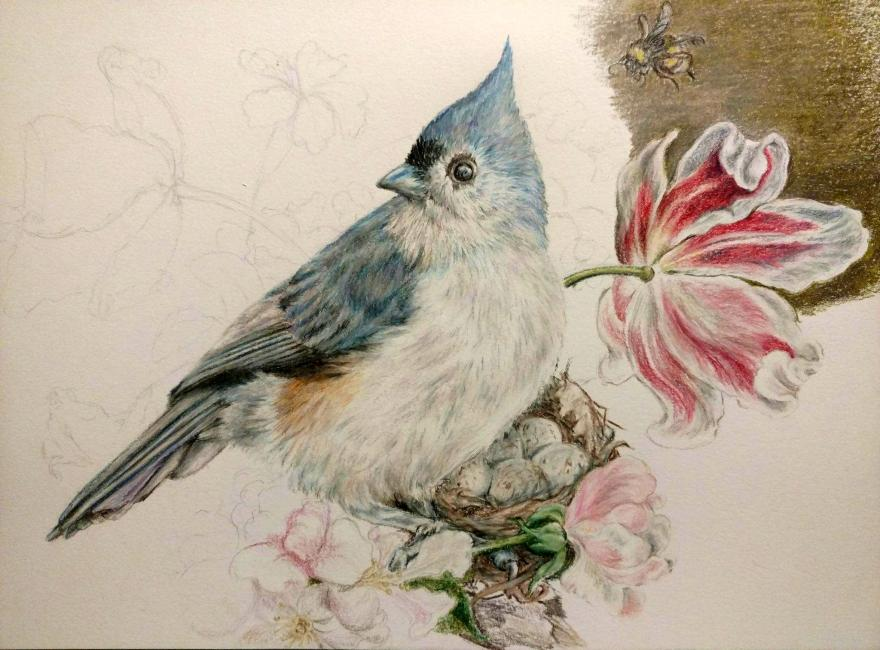 Bluetufted titmouse floral still life